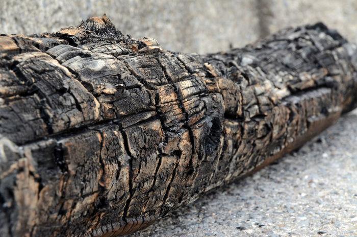 Burnt Log Charred Wood Log Wood