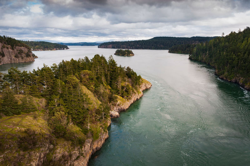 Deception Pass, Washington. The current absolutely rips through the pass between the mainland and Whidbey Island. Current Deception Pass Exploring Forest Landscape Nature Outdoor Outdoors Pacific Northwest  Power In Nature Puget Sound Scenics Tide Tree View View From Above Washington Water Whidbey Island