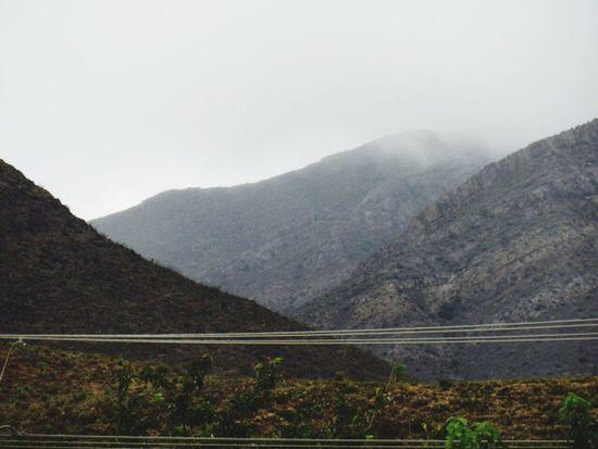 Mountain Landscape Mist Cloud - Sky Plants Beauty In Nature Outdoors Fog Freshness El Paso Tx Franklin Mountains