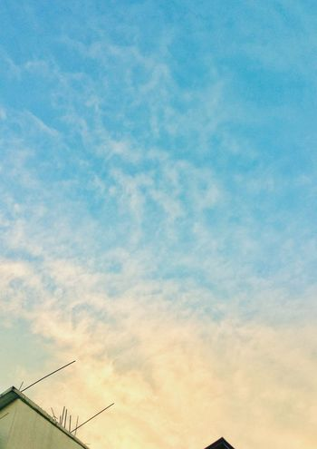 Morning glow Sky Cloud - Sky Low Angle View Communication Outdoors Bird Flying No People Day The Graphic City