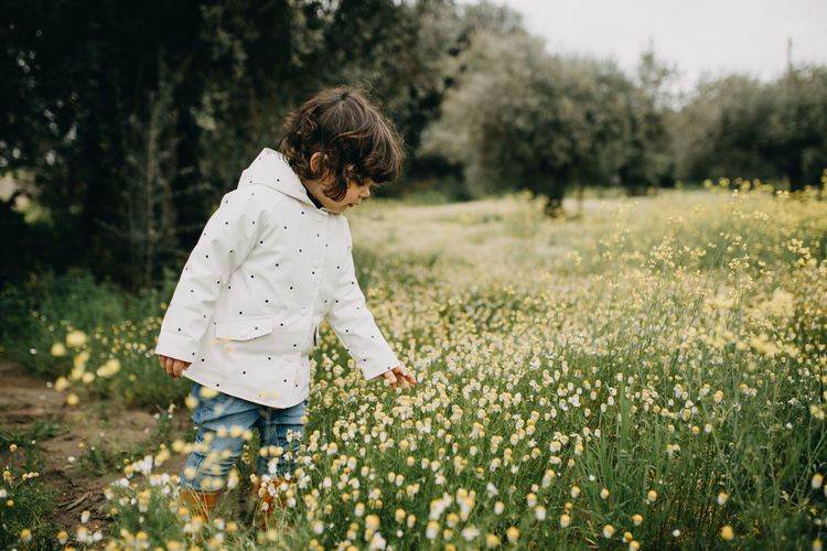 Rear view of girl picking wild flowers