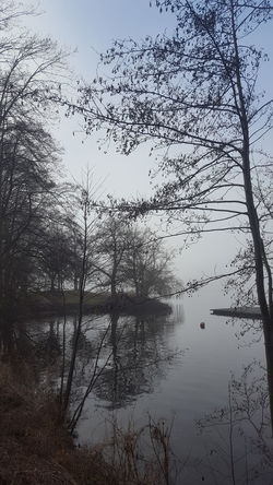 Alster Germany🇩🇪 Hamburg Hamburg City January January 2018 Winter Winter Fog Beauty In Nature Day Foggy Foggy Day Germany Lake Lake View Mystical Atmosphere Nature No People Outdoors Peaceful Peaceful And Quiet Silence Of Nature Water Tree Tranquil Scene Tranquility Scenics Reflection Branch Bare Tree