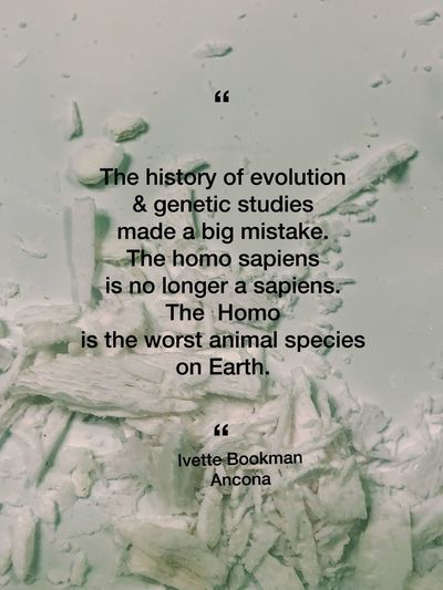 Quotes Universe Human Quotesaboutlife Quoteoftheday Dna Evolution  Pensamiento Species Aniamls Evolution  Critical Quoteoftheday Quote Text Communication Western Script No People Wall - Building Feature Paper Message Handwriting  Weekend Activities Computer Language Connection Script