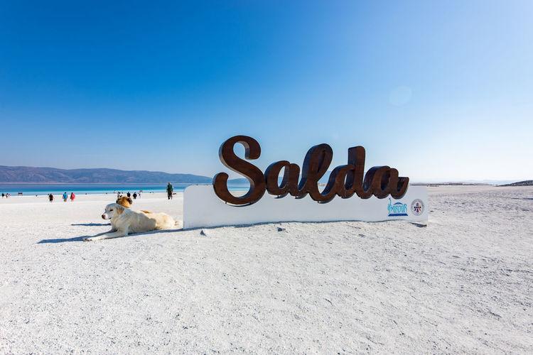 Text on beach against clear sky