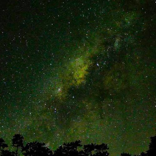 🔭 No mato tudo é mais bonito! Foto 📷 @luizgadetto Varamato Estrelas Stars Vialactea Longa Longaexposição Cosmo Espaço Camping Chapada Campingdochara