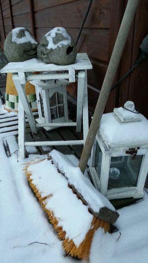 Schnee Snow Garden Garten