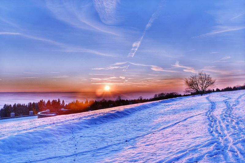 Thuringia Thuringen Gedenkstätte Buchenwald Weimar Snow Winter Cold Temperature Sky Cloud - Sky Beauty In Nature Tree Environment Scenics - Nature Plant Landscape Nature Tranquil Scene Tranquility Sunset No People Land Blue Field Outdoors Winter Tree White Color