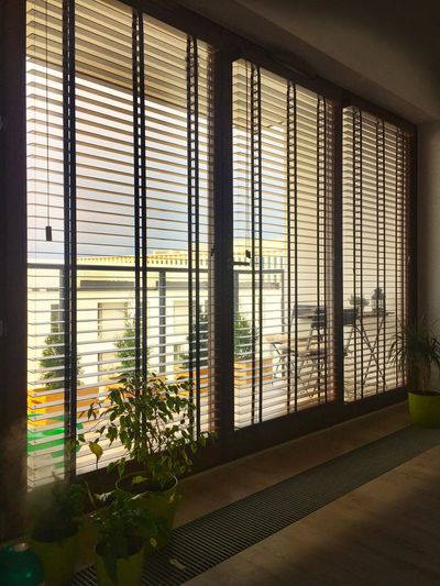 Apartment windows with wooden blinds Horizontal Blinds Horizontal Wooden Blinds Blinds Indoors  Window Architecture No People Built Structure Glass - Material Transparent Day Building Window Frame Sunlight Protection Plant