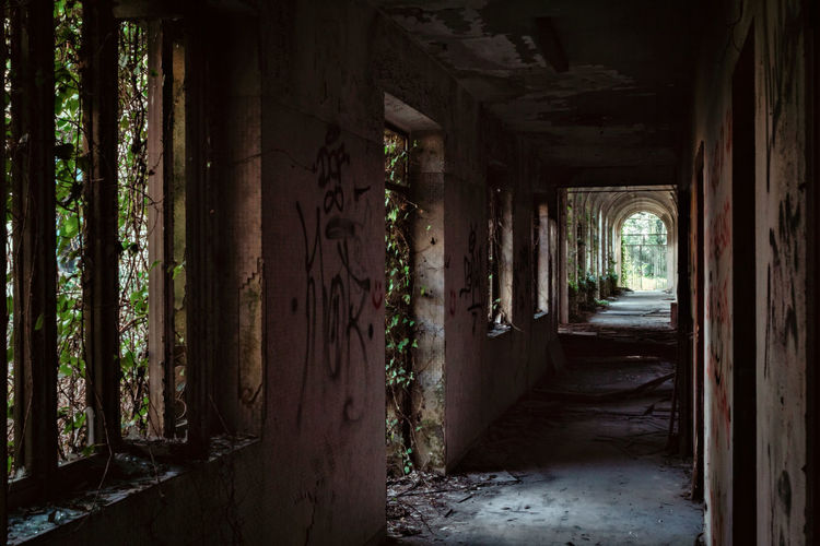 Mental Hospital  Architecture Built Structure Building No People Indoors  Direction Architectural Column The Way Forward Day Arcade Corridor Abandoned Empty Old Nature Run-down Plant History Tree Deterioration Ruined