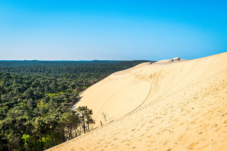 Sky Scenics - Nature Land Clear Sky Landscape Environment Tranquil Scene Desert Beauty In Nature Sand Copy Space Tranquility Nature Non-urban Scene Blue Arid Climate Day Climate Remote Sand Dune No People Outdoors Atmospheric