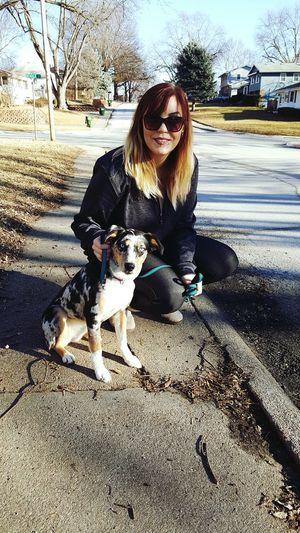Tess passed her two week puppy bored and train!!!! Gosh im just so proud of my little Tesla!!!! Ausky Australianshepherd Husky Mix Sosmart Mypup