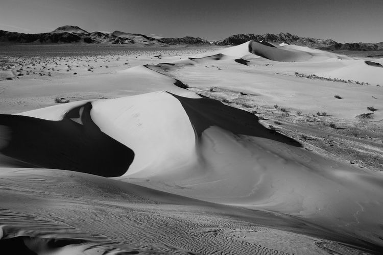 Beauty In Nature Black And White Death & Decay Ibex Sand Dunes Isolated National Parks Outdoors Remote Sand Dunes, Death Valley