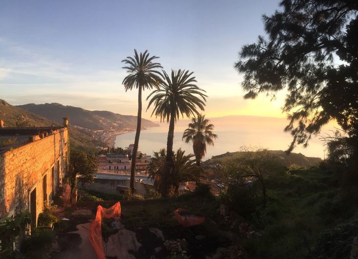 Taormina Taormina Vista Bellissima Taormina And Etna Taormina, Sicily 🇮🇹 Sicily, Italy Sicilia Sizilien Sicily Tree Sky Plant Tropical Climate Palm Tree Sunset Nature Beauty In Nature Mountain Scenics - Nature Water Tranquil Scene