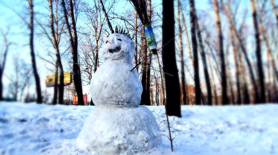 Snowman Snow Sport Snow Sports Snow ❄ Handmade Art