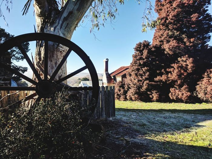 Tree Sky Wagon Wheel Tranquil Scene Countryside