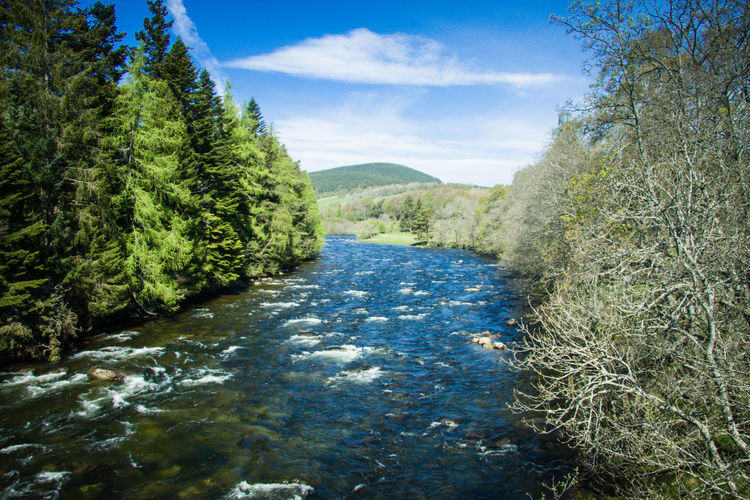 Schottland - Scotland Schottland Scotland Beauty In Nature Day Environment Flowing Flowing Water Forest Green Color Growth Land Landscape Nature No People Non-urban Scene Outdoors Plant River Scenics - Nature Sky Tranquil Scene Tranquility Tree Water