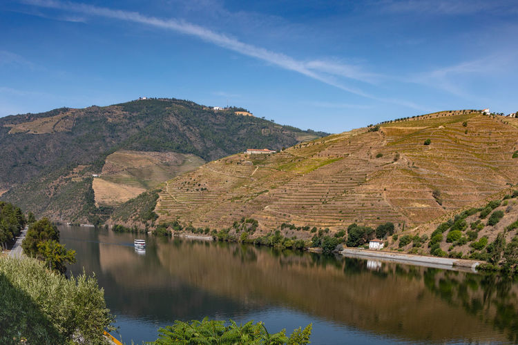 Douro river with vineyards in surrounding valley Douro  Hills Portugal Beauty In Nature Day Environment Idyllic Lake Landscape Mountain Mountain Range Nature No People Non-urban Scene Outdoors Plant Reflection Riverbank Scenics - Nature Sky Tranquil Scene Tranquility Vineyard Water