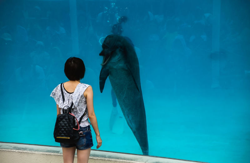 Rear view of woman standing in aquarium