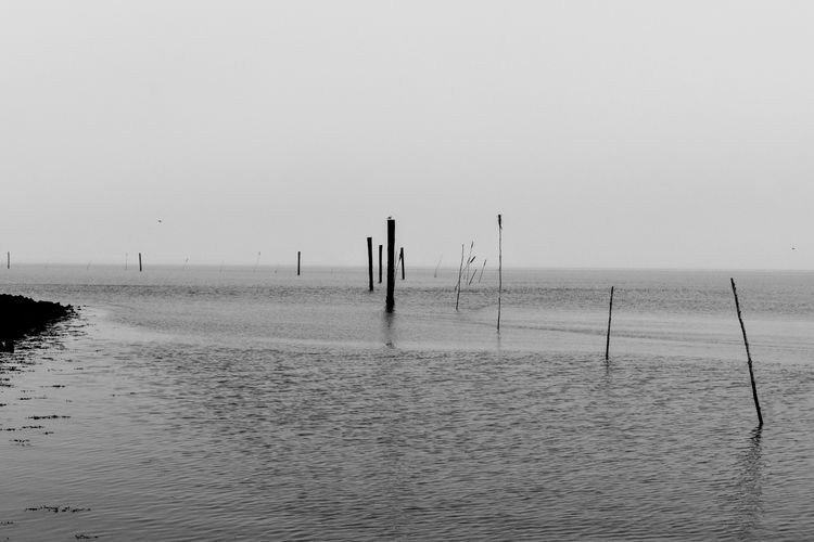 UNESCO World Heritage Site Ostfriesland Coast Coastline Eastfrisian Water Sea Beach Full Length Standing Silhouette Fisherman Sand Sky Horizon Over Water Fishing Pole Sandy Beach Ocean Seascape Wave EyeEmNewHere Coastal Feature Calm Fishing Shore Fishing Rod Seashore My Best Photo
