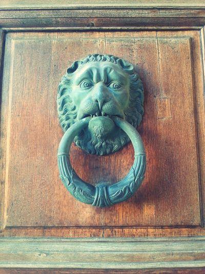 Old Door Lion Lion Rock PhonePhotography Photography Eyeemphotography