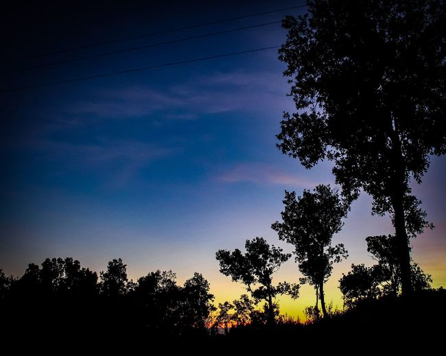 Sunset Natureshot  Naturephotography Nature_lovers Photographers Photography Travelph Photograph Traveldestination Traveltheworld Travelmoments Tuscany Italy Panorama View Shades Colorful Streetphotography Tree Astronomy Sunset Silhouette Sky Tree Trunk Tree Area Branch Flower Tree WoodLand Woods Majestic Forest