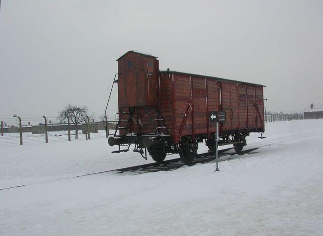 Campo di concentramento Birkenau, gennaio 2010 Barbed Wire Cold Temperature Day Holocaust No People Outdoors Sky Snow Train Winter