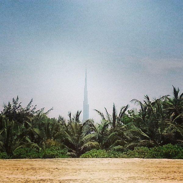 Jumeira Beach Burj Khalifa trees