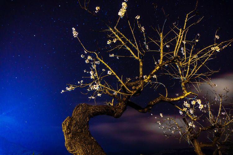 Amatler florit Landscape Mancordelavall Hello World Enjoying Life