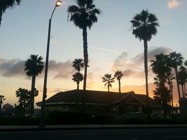 The Pursuit Of Happiness Huntington Beach Driving Home
