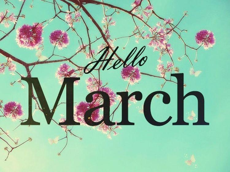 Einen guten Start in den hoffentlich schönen, neuen Monat März wünsche ich allen hier 🤗 Happy new month be good to me and everybody else.. Springtime Is Coming Growth Nature Outdoors March 2017