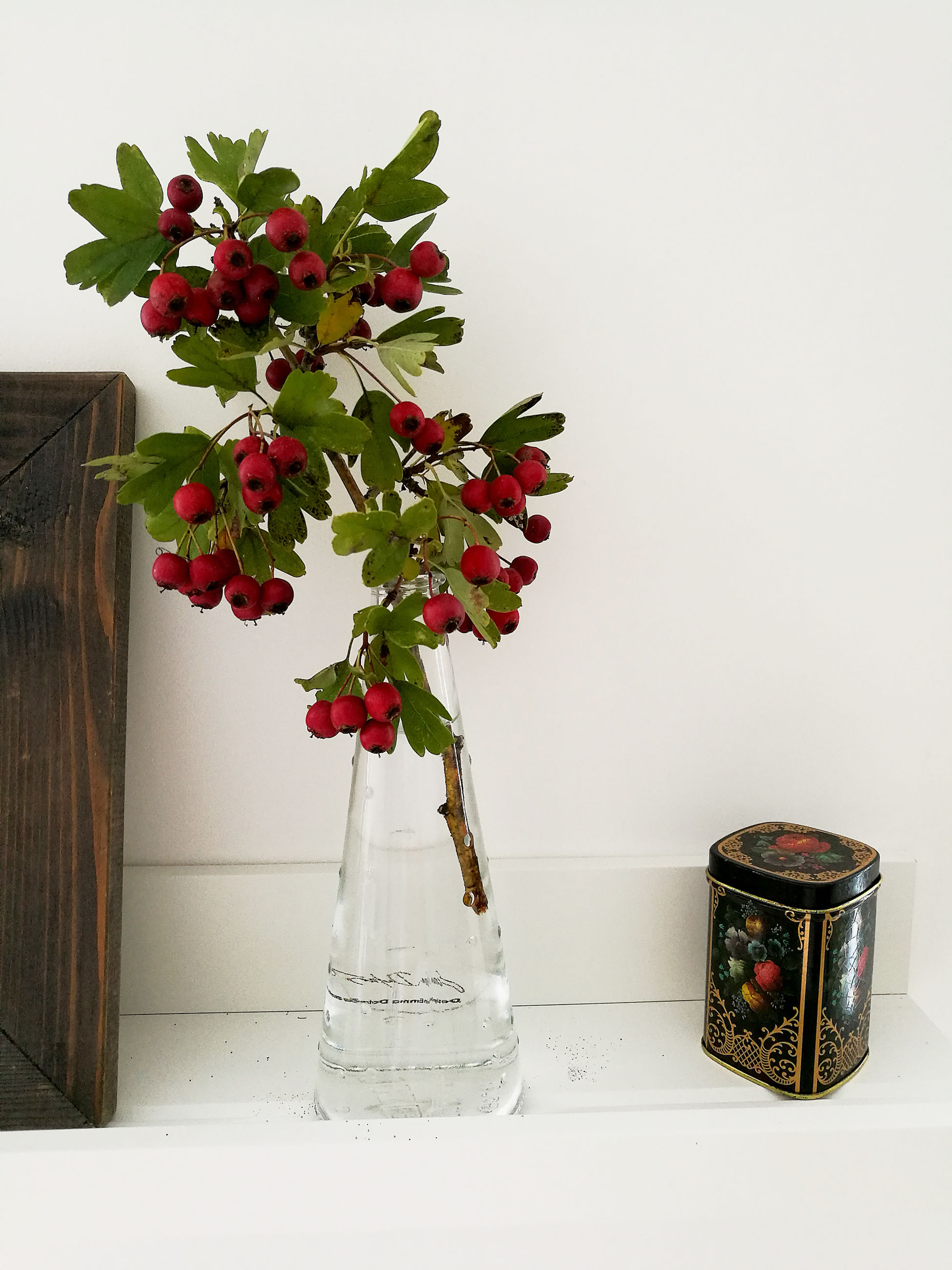 vase, red, table, no people, growth, indoors, flower, nature, freshness, day