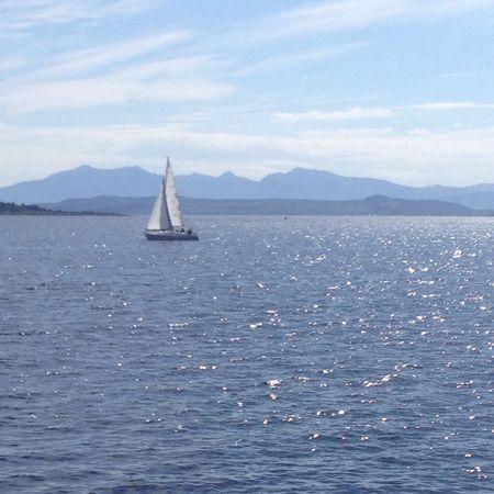 Summer Boat Sea Sun Nofilter Noedit