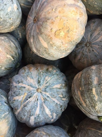 Food And Drink Food Vegetable No People Freshness Backgrounds Healthy Eating Close-up Pumpkin Nature Day