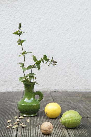 Plant in vase by lemon on wood against wall