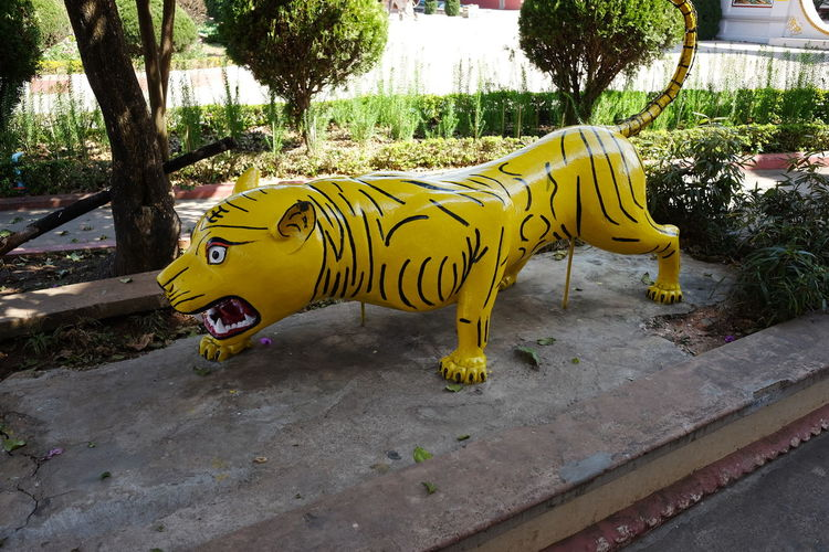 Tiger Statue in the grounds of Chinese Temple Animal Representation Animal Themes Chinese Culture Chinese Statue Chinese Temple Chinese Theatre Composition Full Frame Maymyo Myanmar No People One Animal Outdoor Photography Replica  Shade Statue Tiger Trees Yellow Colour
