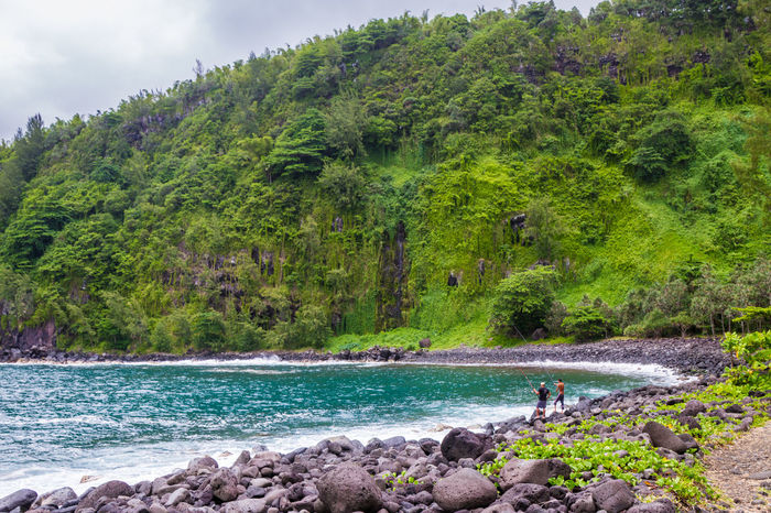 Anse Des Cascades Bay Beauty In Nature Distant EyeEm RéunionIsland Idyllic Lush Foliage Mountain Nature The KIOMI Collection Outdoors Reunion Island Scenics Sea Stream Tranquil Scene Tranquility Tree Trip Vacation Voyage Water Landscapes Landscapes With WhiteWall Here Belongs To Me