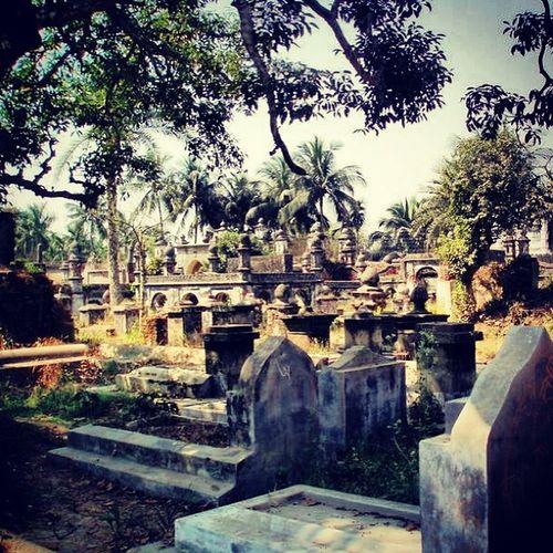 Graveyard Trees Dead People Peace Pray Grave Silence WestBengal Murahidabad Birbhum