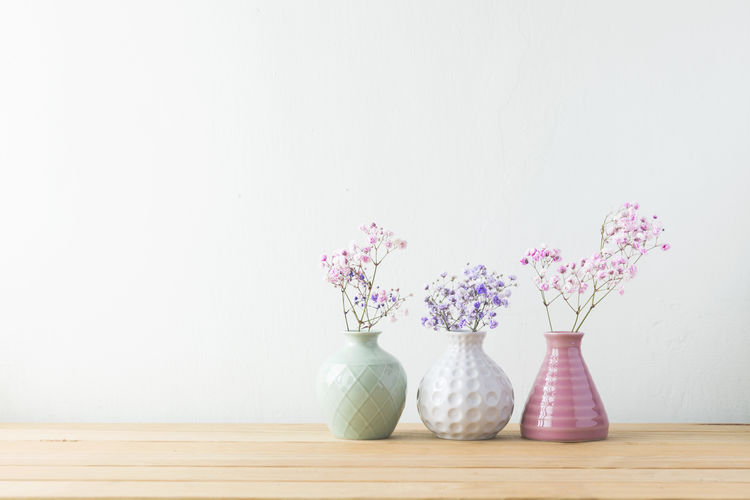 Container Copy Space Decoration Flower Flower Head Flowering Plant Food And Drink Fragility Freshness Indoors  Nature No People Pitcher - Jug Plant Simplicity Still Life Studio Shot Table Vase Vulnerability  Wall - Building Feature Wood - Material