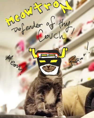 Meowtron! Defender of thy Couch! Cat Voltron Doodle Cute Day Protruding No People Outdoors