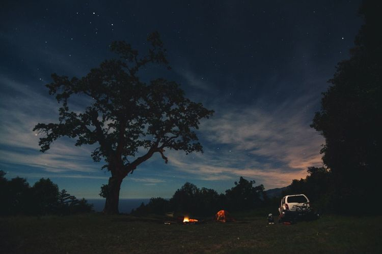 Above the Big Sur coast. Night Camping Outdoors Big Sur Campfire Tree Sky Nature Star - Space Car Beauty In Nature Transportation Mode Of Transport Scenics Landscape Milky Way Space No People Astronomy Galaxy First Eyeem Photo Finding New Frontiers