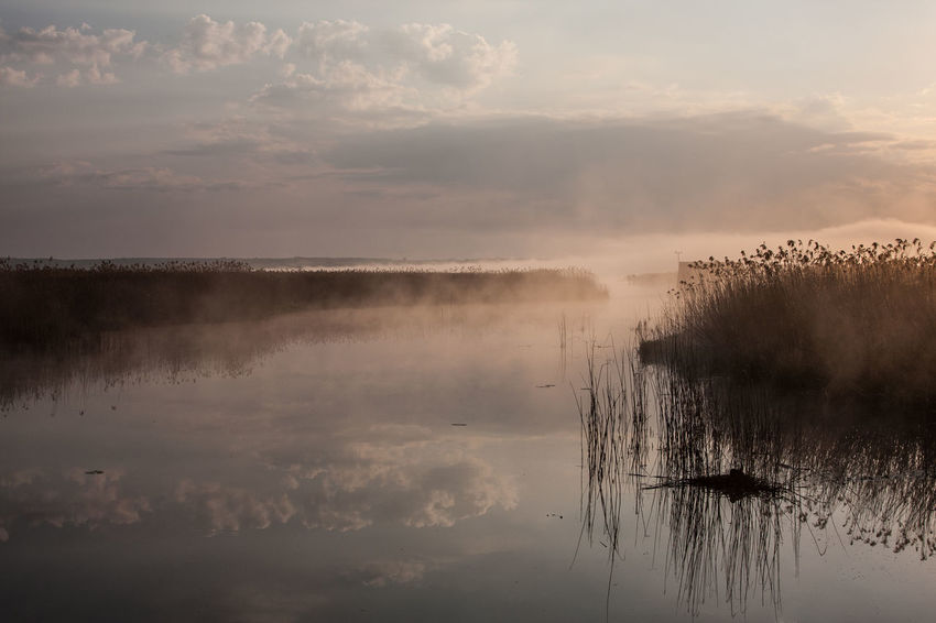 Federsee Beauty In Nature Cloud - Sky Day Hazy  Idyllic Lake Landscape Mist Nature No People Outdoors Reflection Scenics Sky Sunset Tranquil Scene Tranquility Travel Destinations Water Waterfront