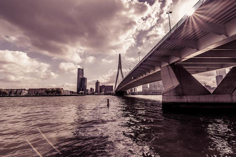 Nikon Rotterdam