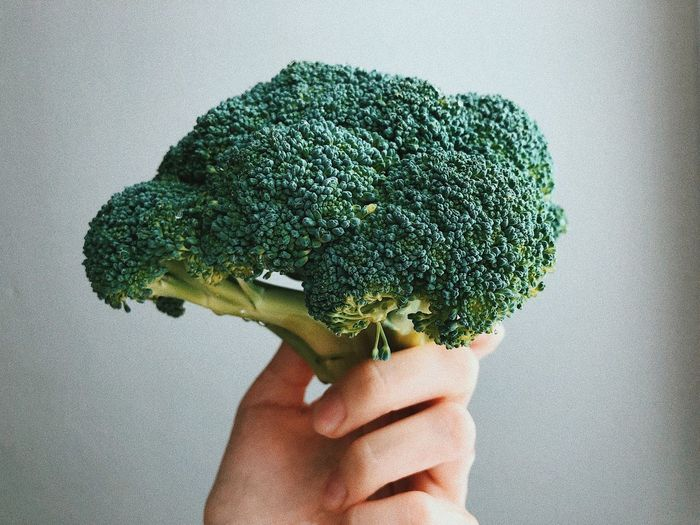 Broccoli in a hand