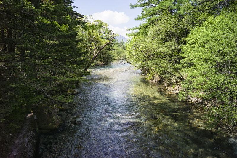 上高地 Photography Landscape EyeEm Nature Lover Nature_collection Landscape_Collection 梓川 Taking Pictures My Country In A Photo Taking Photos