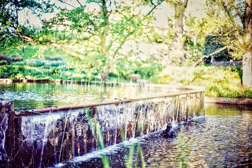 Waterfall in the Citypark Spring Watterfall Citypark Planten Un Blomen Water Plant Nature Tree Reflection No People Lake Day Waterfront Outdoors Tranquility Beauty In Nature Architecture Growth Scenics - Nature Tranquil Scene Wet Built Structure Green Color Flowing Water