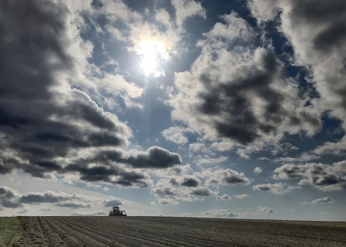 Tractor working in a field on a sunny day. Farm Field Rural Scene Scenics Nature Cloud - Sky Landscape Plowed Field Agriculture Tractor Horizontal Sun Blue Sky