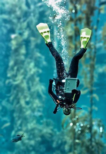 SCUBA Scuba Diving Underwater