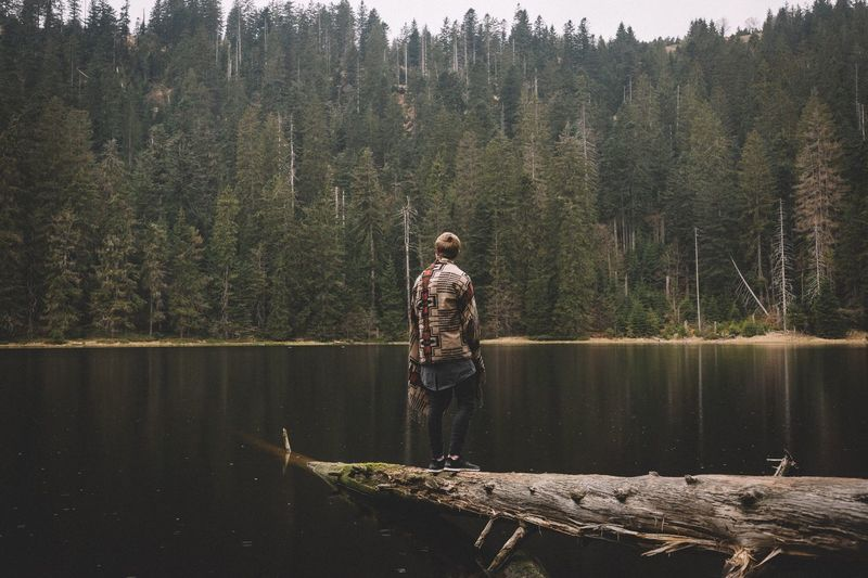 Man Standing On Fallen Tree Amidst Lake Against Forest