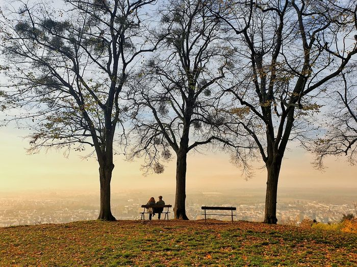 People on bench by bare trees against sky during sunset