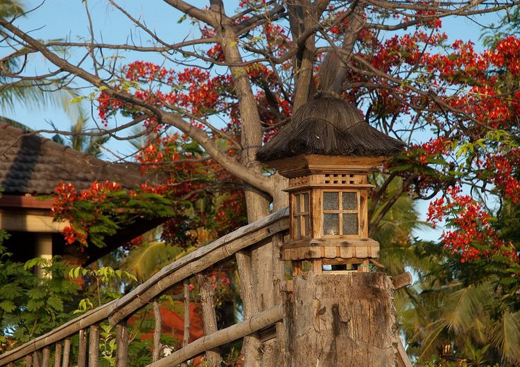 Low angle view of traditional lantern at japanese garden